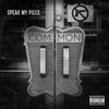 Common - Speak My Piece (Explicit)