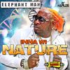 Elephant Man - Inna Wi Nature - Single