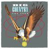 Big Country - The Seer (Re-Presents)