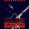 B.B. King - Cotton Tail