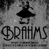 Johannes Brahms - Brahms: The Best of Hungarian Dances & Concerto in D Major for Violin and Orchestra