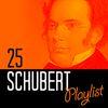Franz Schubert - 25 Schubert Playlist