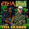 Collie Buddz - Feel So Good