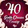 Robert Schumann - 40 Gentle Classics for the Evening