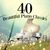 - 40 Beautiful Piano Classics