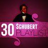 Franz Schubert - 30 Schubert Playlist