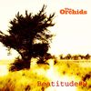 The Orchids - Beatitude #9