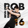 Robin - 16