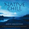 David Arkenstone - Native Chill