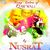 - Many Colors of Qawwali by Nusrat