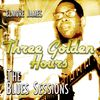 Elmore James - Three Hours of Gold - The Blues Sessions
