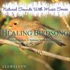 Llewellyn - Healing Birdsong: Natural Sounds with Music Series