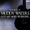 Muddy Waters - Got My Mojo Working - The Best of Muddy Waters