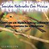 Llewellyn - Canto de los Pájaros para la Curación: Música Continua Sin Interrupción: Sonidos Naturales Con Música