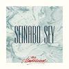 Seinabo Sey - For Madeleine