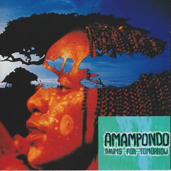 Amampondo - Drums for Tomorrow