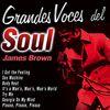 James Brown - Grandes Voces del Soul: James Brown