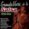 Celia Cruz - Grandes Voces de la Salsa: Celia Cruz