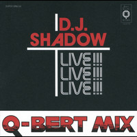 DJ Shadow - Camel Bobsled Race (Q-Bert Mixes)