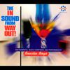 The In Sound From Way Out!  Beastie Boys