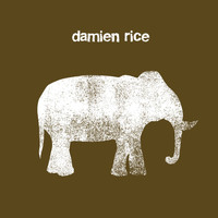 Damien Rice - Cannonball (2 Track DMD Single)