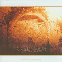 Aphex Twin - Selected Ambient Works, Vol. II