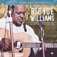 Big Joe Williams - The Sonet Blues Story