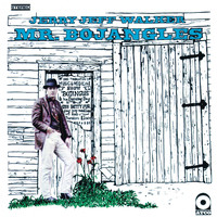Jerry Jeff Walker - Mr. Bojangles