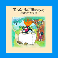 Cat Stevens - Tea For The Tillerman (Remastered)