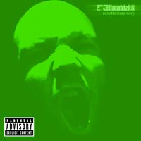 Limp Bizkit - Results May Vary (UK Only Version)