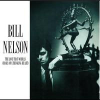 Bill Nelson - The Love That Whirls