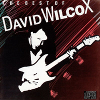 David Wilcox - The Best Of David Wilcox