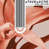 Stavesacre - Collective
