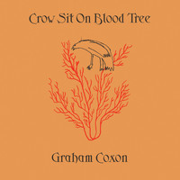 Graham Coxon - Crow Sit On Blood Tree (Explicit)
