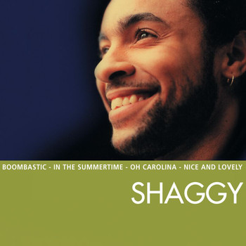 Shaggy - Essential (Explicit)