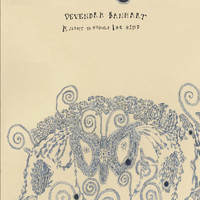 Devendra Banhart - A Sight To Behold