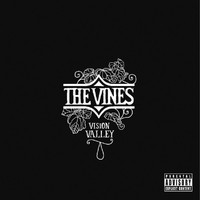 The Vines - Vision Valley (Explicit)