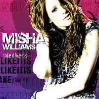 Misha Williams - Take It Like It Is