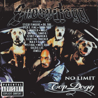 Snoop Dogg - No Limit Top Dogg (Explicit)