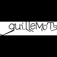 Guillemots - Through The Windowpane (Live at Reading 2006)