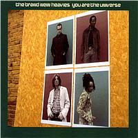 The Brand New Heavies - You Are The Universe (International Release)