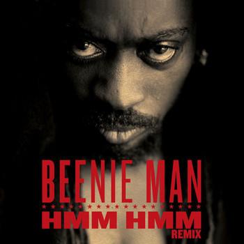 Download Beenie Man Hmm Instrumental 34