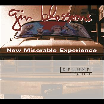 Gin Blossoms - New Miserable Experience