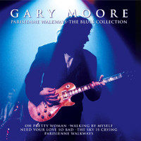 Gary Moore - The Blues Collection