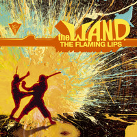 The Flaming Lips - The W.A.N.D. (U.S. DMD Maxi)