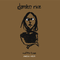 Damien Rice - Rootless Tree