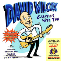 David Wilcox - Greatest Hits Too