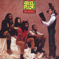 Steel Pulse - True Democracy