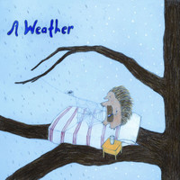 A Weather - Feather Test