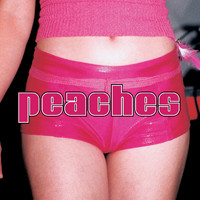 Peaches - The Teaches Of Peaches (Explicit)